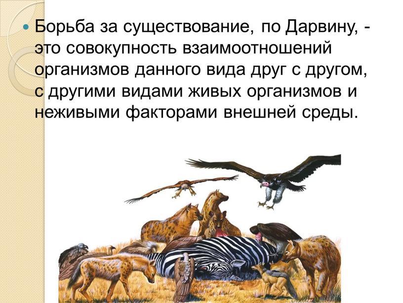 Борьба за существование, по Дарвину, - это совокупность взаимоотношений организмов данного вида друг с другом, с другими видами живых организмов и неживыми факторами внешней среды