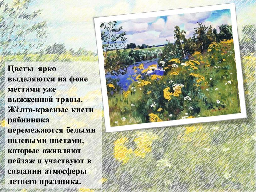 Цветы ярко выделяются на фоне местами уже выжженной травы