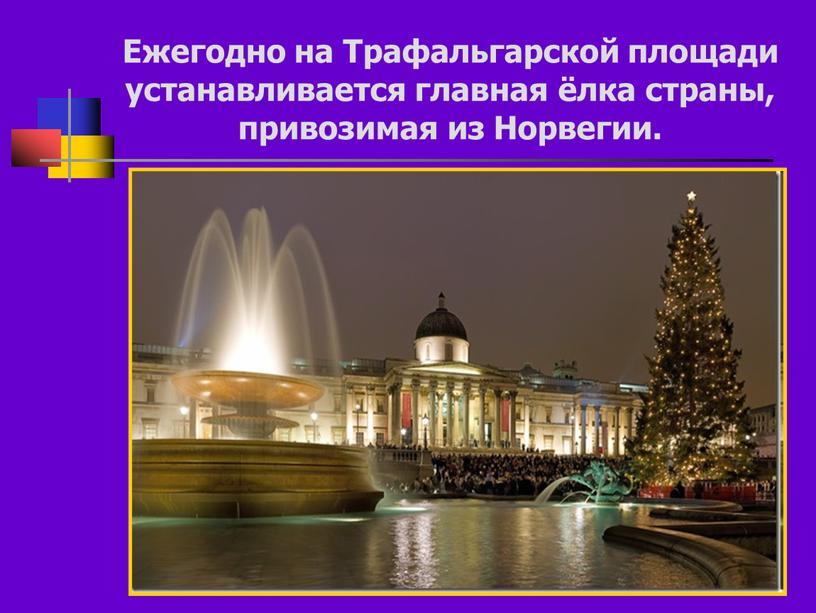 Ежегодно на Трафальгарской площади устанавливается главная ёлка страны, привозимая из
