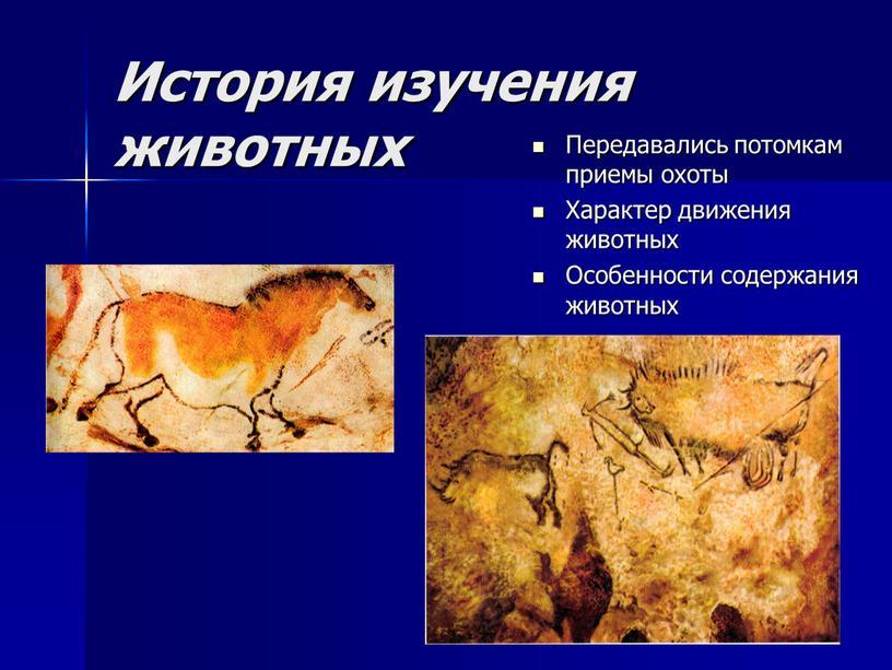 История изучения животных Передавались потомкам приемы охоты