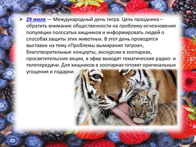 Международный день тигра. Цель праздника – обратить внимание общественности на проблему исчезновения популяции полосатых хищников и информировать людей о способах защиты этих животных