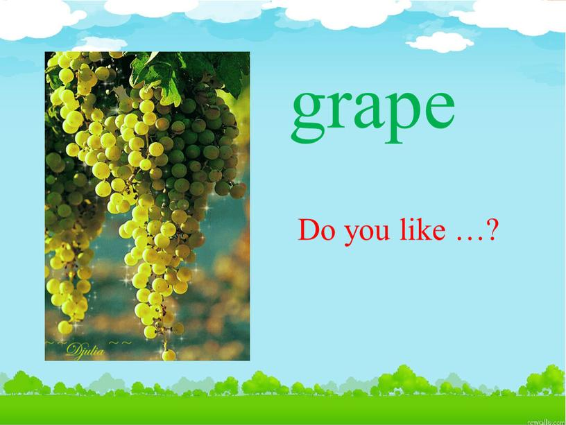 grape Do you like …?