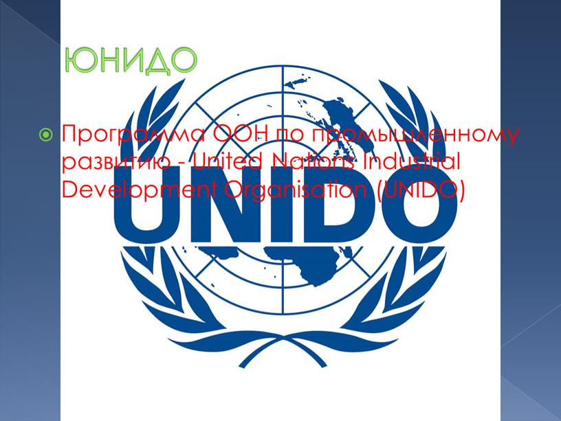 ЮНИДО Программа ООН по промышленному развитию -