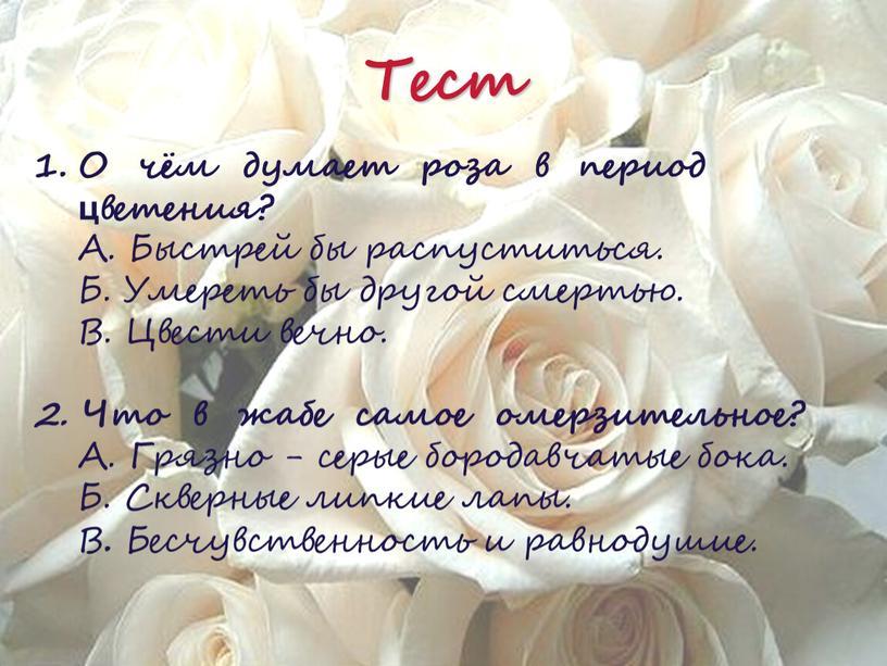О чём думает роза в период цветения?