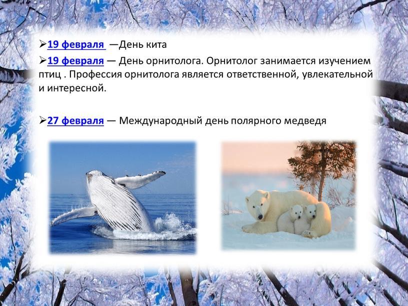 День кита 19 февраля — День орнитолога