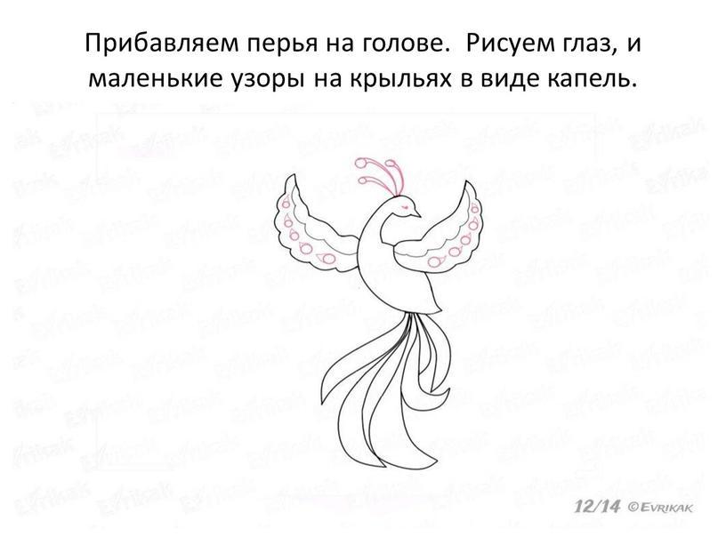 Прибавляем перья на голове. Рисуем глаз, и маленькие узоры на крыльях в виде капель
