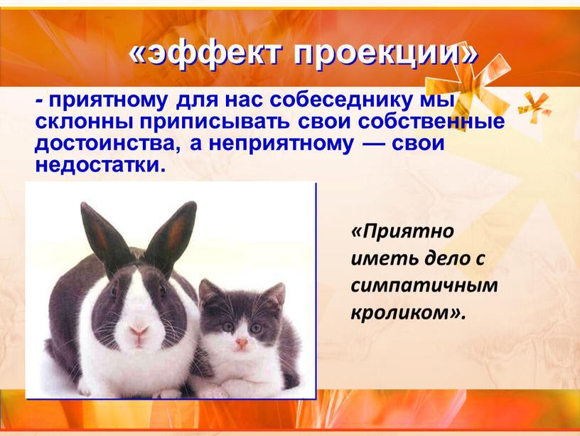 Приятно иметь дело с симпатичным кроликом»