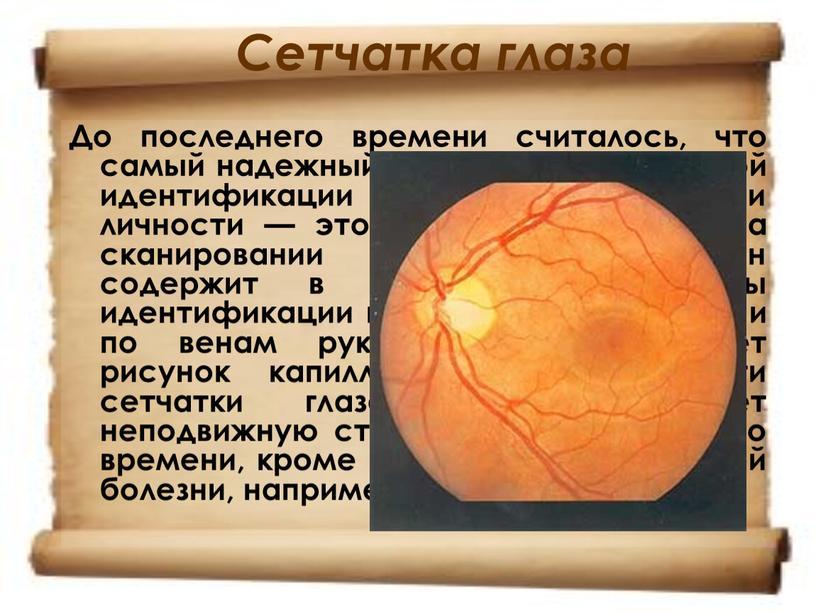 Сетчатка глаза До последнего времени считалось, что самый надежный метод биометрической идентификации и аутентификации личности — это метод, основанный на сканировании сетчатки глаза