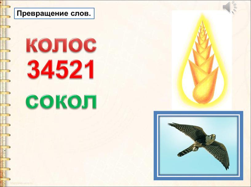Превращение слов. колос 34521 сокол