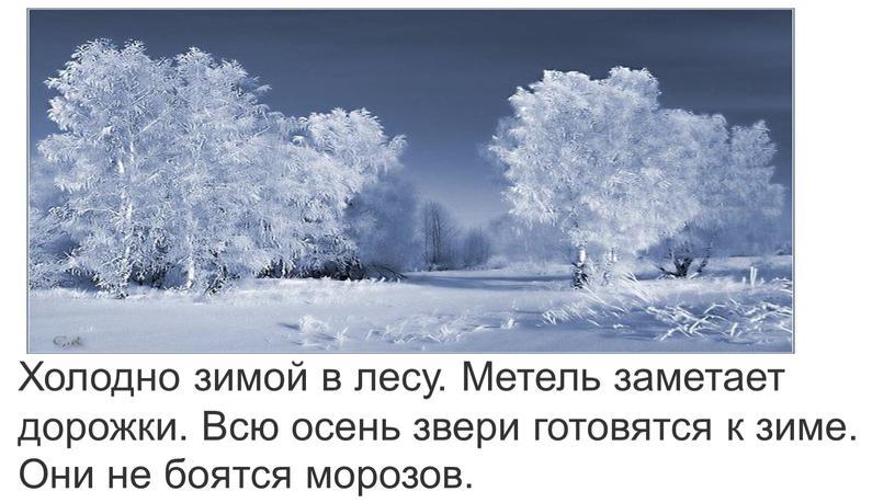 Холодно зимой в лесу. Метель заметает дорожки