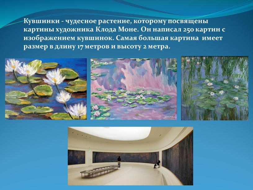 Кувшинки - чудесное растение, которому посвящены картины художника