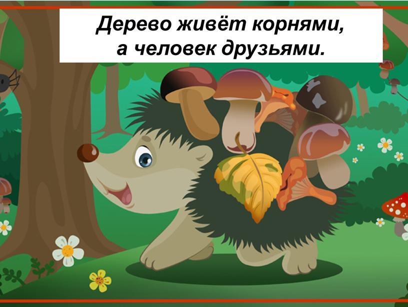Дерево живёт корнями, а человек друзьями