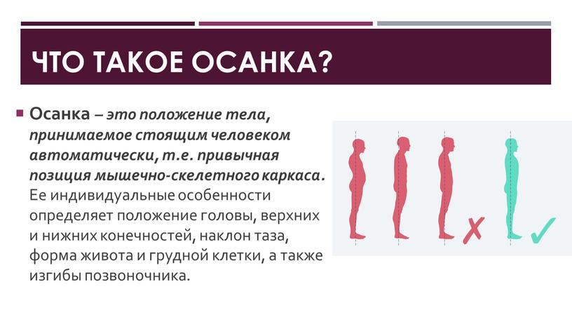 ЧТО ТАКОЕ ОСАНКА? Осанка – это положение тела, принимаемое стоящим человеком автоматически, т