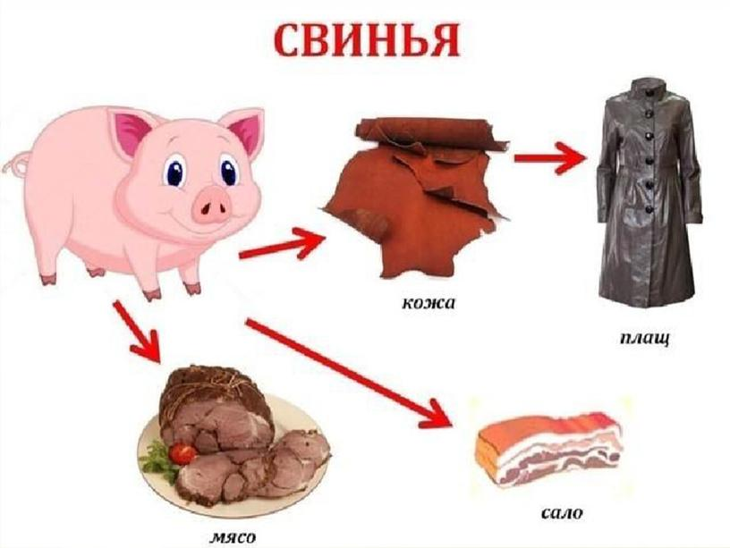 """""""Домашние животные:корова, свинья,кот, собака"""""""