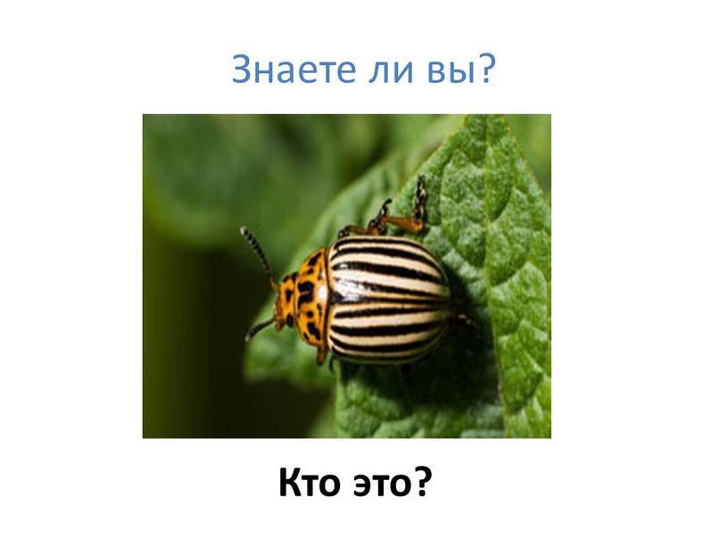Знаете ли вы? Кто это?