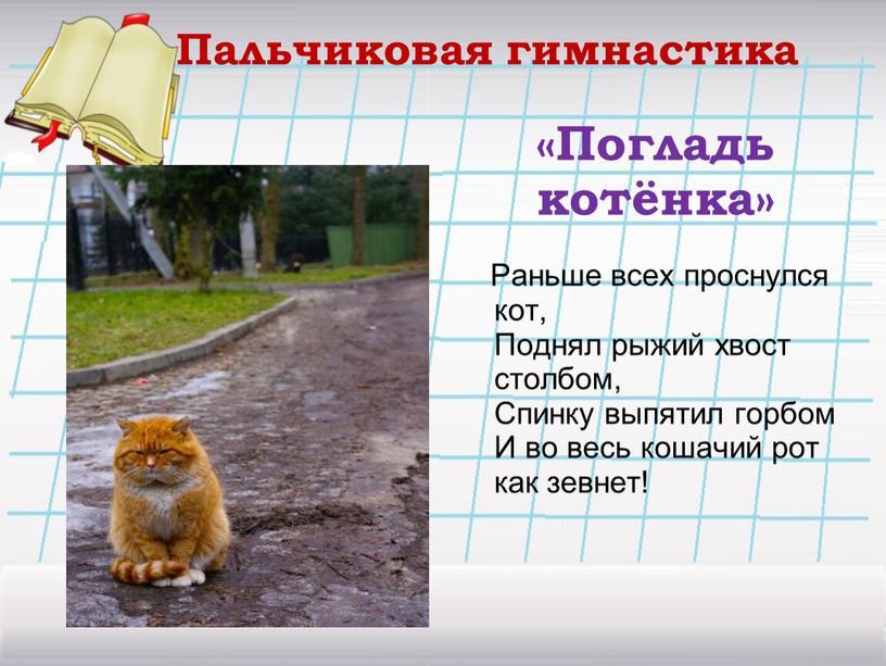 Погладь котёнка» Раньше всех проснулся кот,