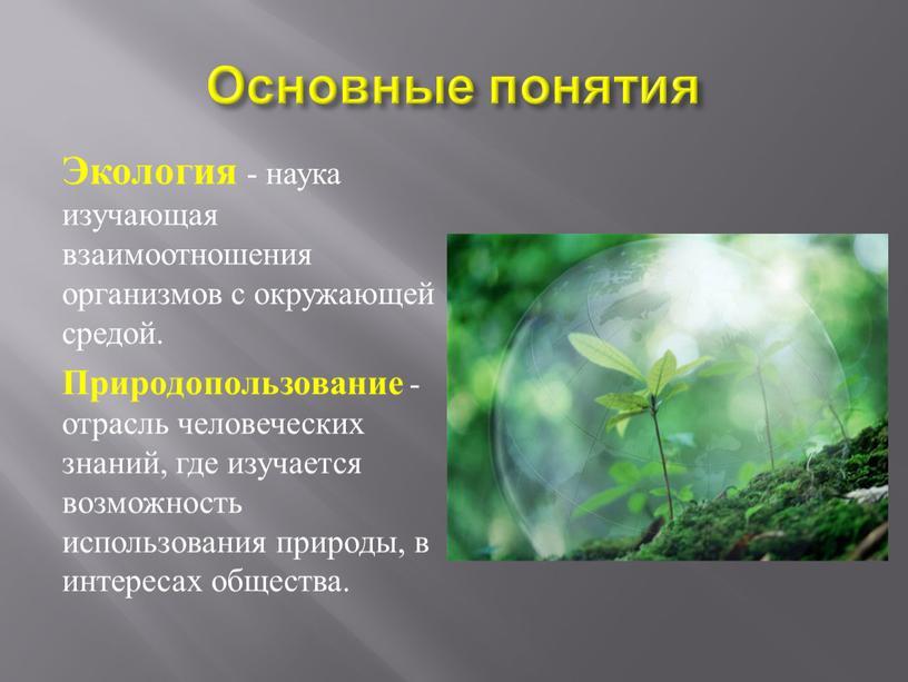 Основные понятия Экология - наука изучающая взаимоотношения организмов с окружающей средой