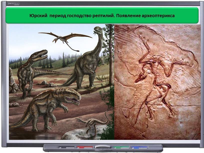 Юрский период господство рептилий