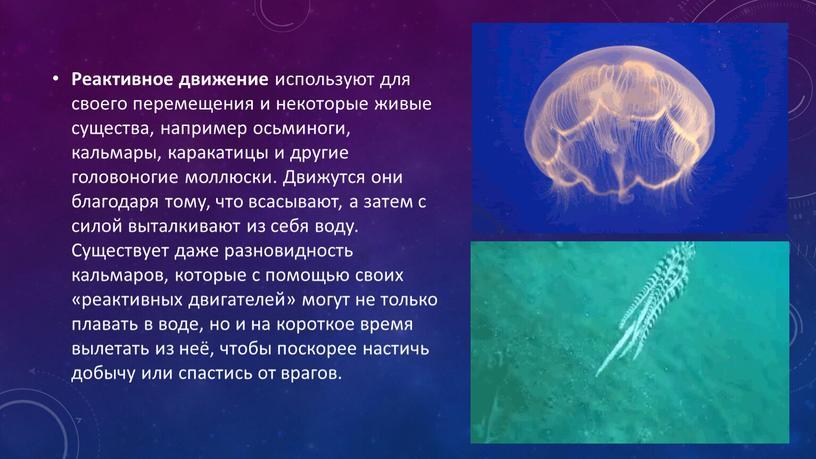 Реактивное движение используют для своего перемещения и некоторые живые существа, например осьминоги, кальмары, каракатицы и другие головоногие моллюски
