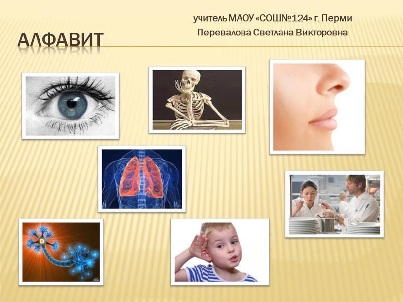АЛФАВИТ учитель МАОУ «СОШ№124» г