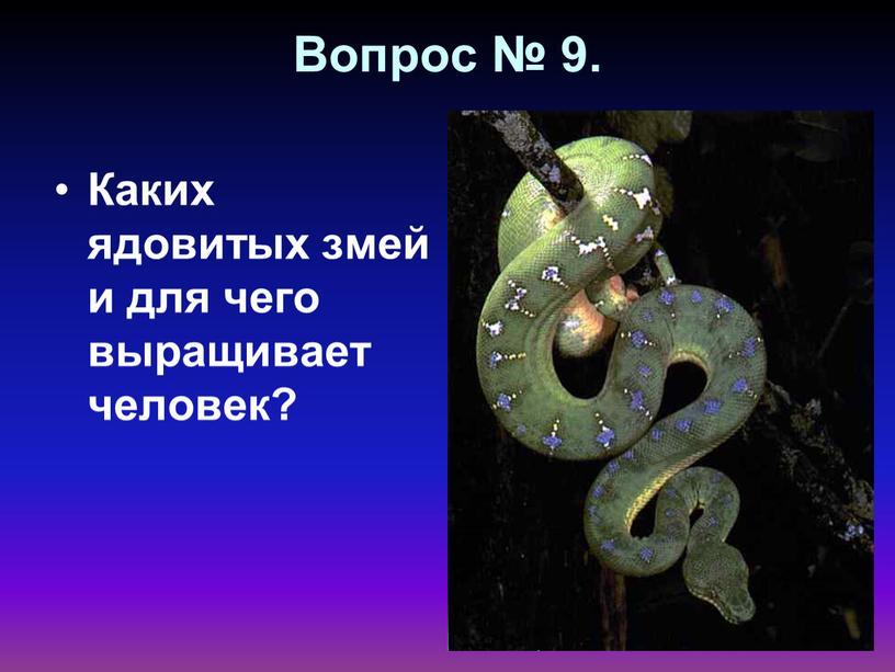 Вопрос № 9. Каких ядовитых змей и для чего выращивает человек?