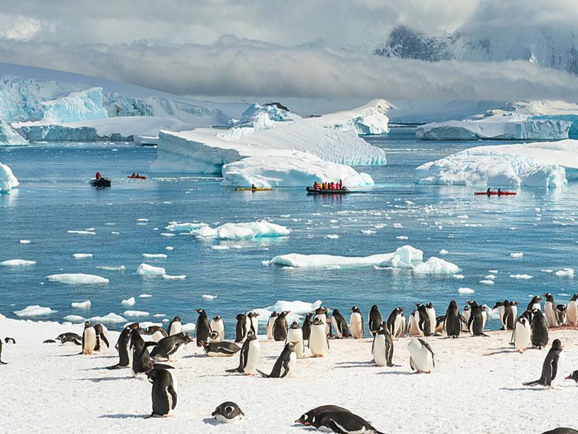 "Презентация к уроку географии. 7 класс. Тема: "" Антарктида"""
