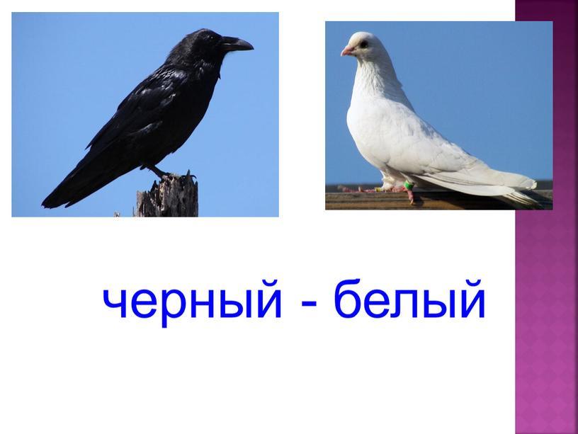 черный - белый