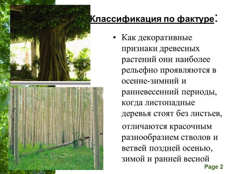 Классификация по фактуре : Как декоративные признаки древесных растений они наиболее рельефно проявляются в осенне-зимний и ранневесенний периоды, когда листопадные деревья стоят без листьев, отличаются…