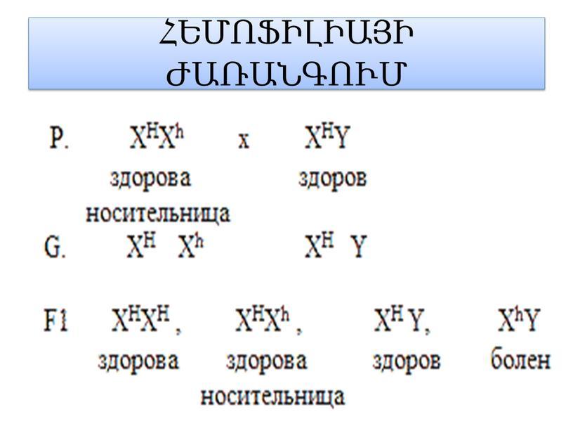 ՀԵՄՈՖԻԼԻԱՅԻ ԺԱՌԱՆԳՈՒՄ