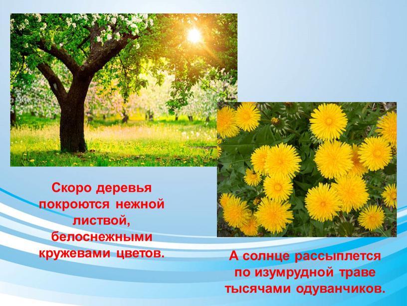 Скоро деревья покроются нежной листвой, белоснежными кружевами цветов