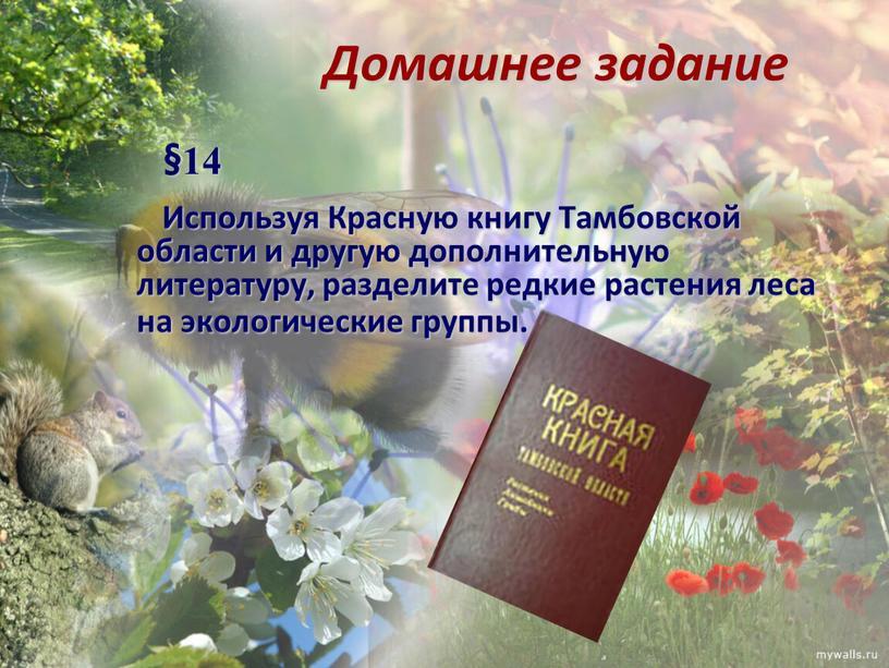 Домашнее задание §14 Используя