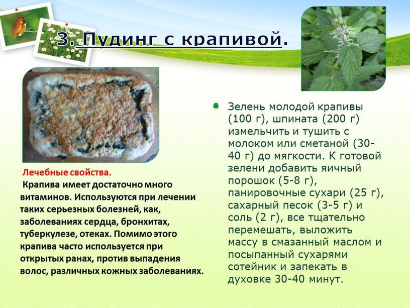 Пудинг с крапивой. Зелень молодой крапивы (100 г), шпината (200 г) измельчить и тушить с молоком или сметаной (30-40 г) до мягкости