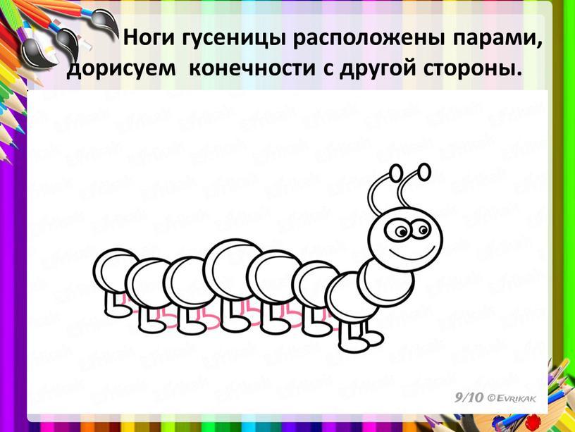Ноги гусеницы расположены парами, дорисуем конечности с другой стороны