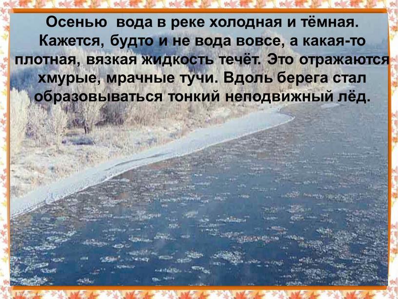 Осенью вода в реке холодная и тёмная