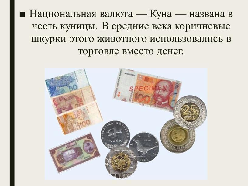 Национальная валюта — Куна — названа в честь куницы
