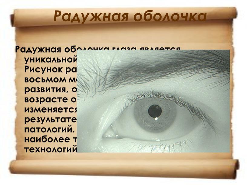 Радужная оболочка Радужная оболочка глаза является уникальной характеристикой человека