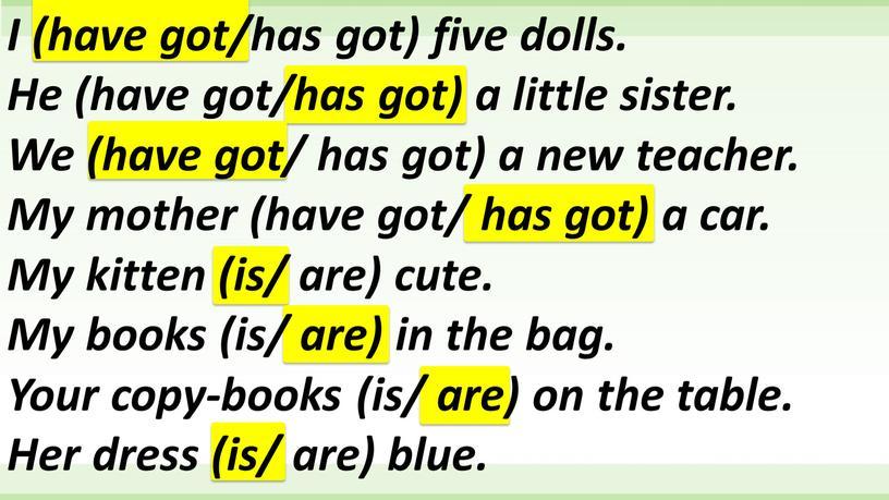 I (have got/has got) five dolls