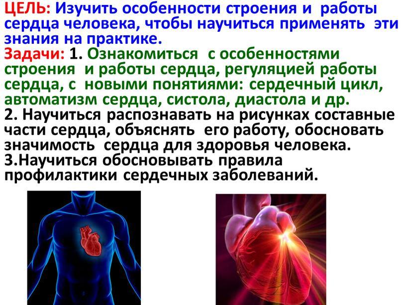 ЦЕЛЬ: Изучить особенности строения и работы сердца человека, чтобы научиться применять эти знания на практике
