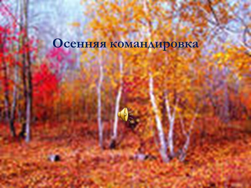 Осенняя командировка
