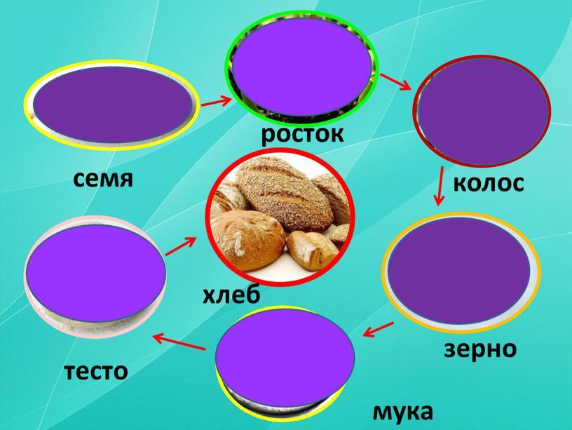 семя росток колос зерно мука тесто хлеб