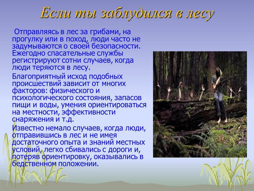 Если ты заблудился в лесу