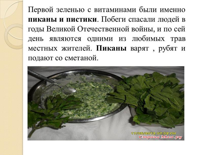 Первой зеленью с витаминами были именно пиканы и пистики