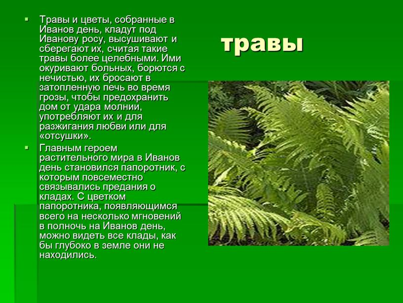 Травы и цветы, собранные в Иванов день, кладут под