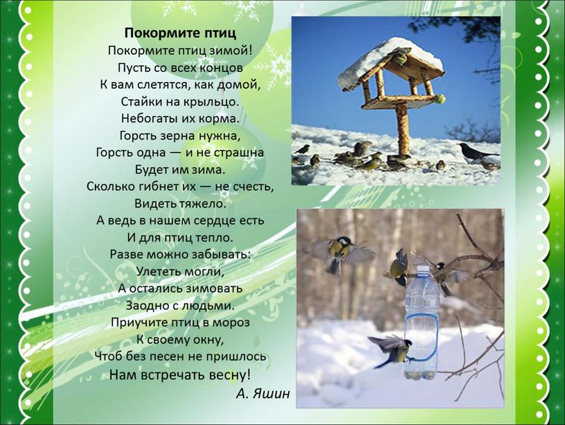 Покормите птиц Покормите птиц зимой!