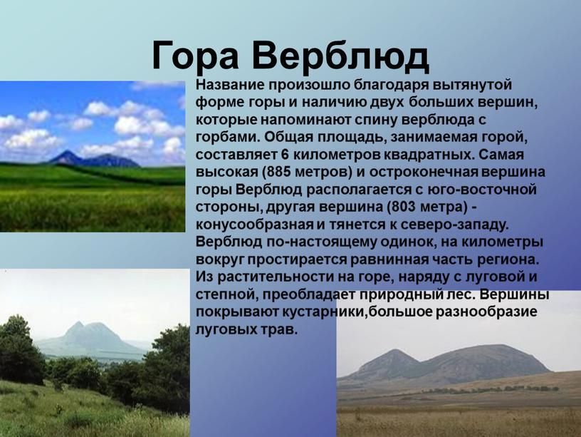 Гора Верблюд Название произошло благодаря вытянутой форме горы и наличию двух больших вершин, которые напоминают спину верблюда с горбами