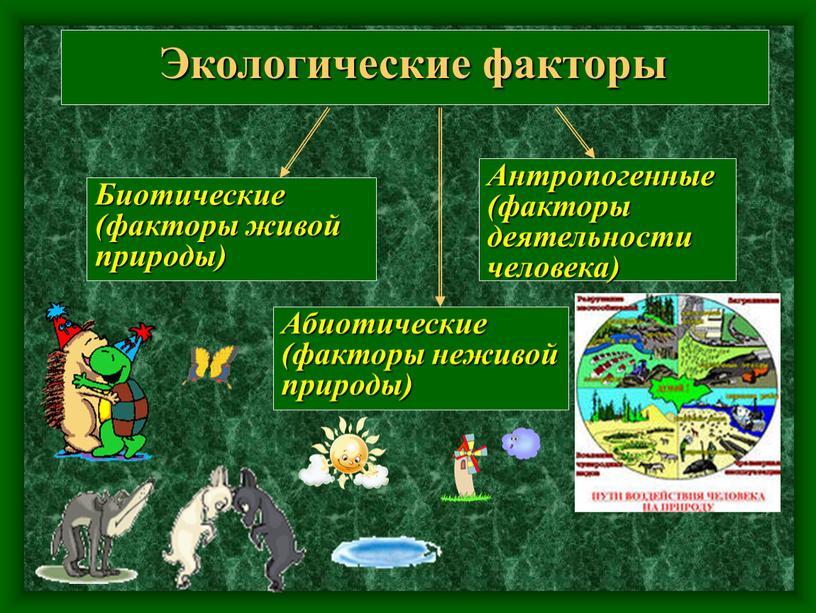 Экологические факторы Биотические (факторы живой природы)