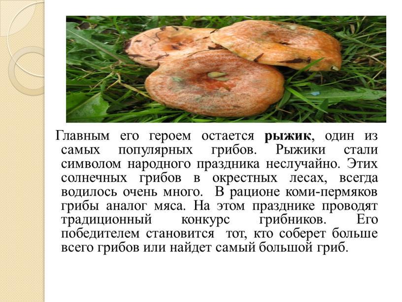 Главным его героем остается рыжик , один из самых популярных грибов