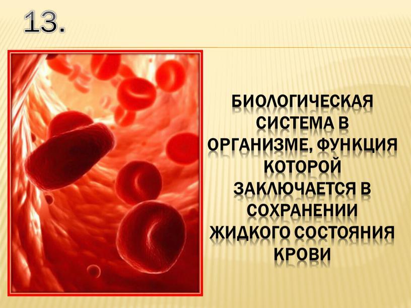 13. биологическая система в организме, функция которой заключается в сохранении жидкого состояния крови
