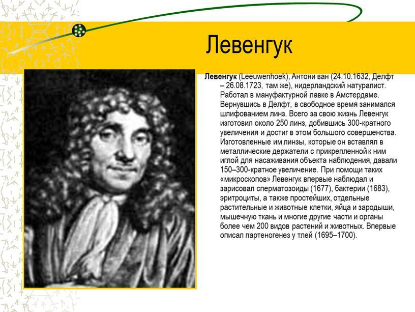 Левенгук Левенгук (Leeuwenhoek),