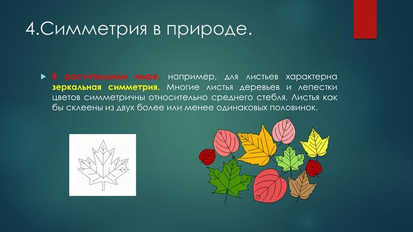 Симметрия в природе. В растительном мире, например, для листьев характерна зеркальная симметрия
